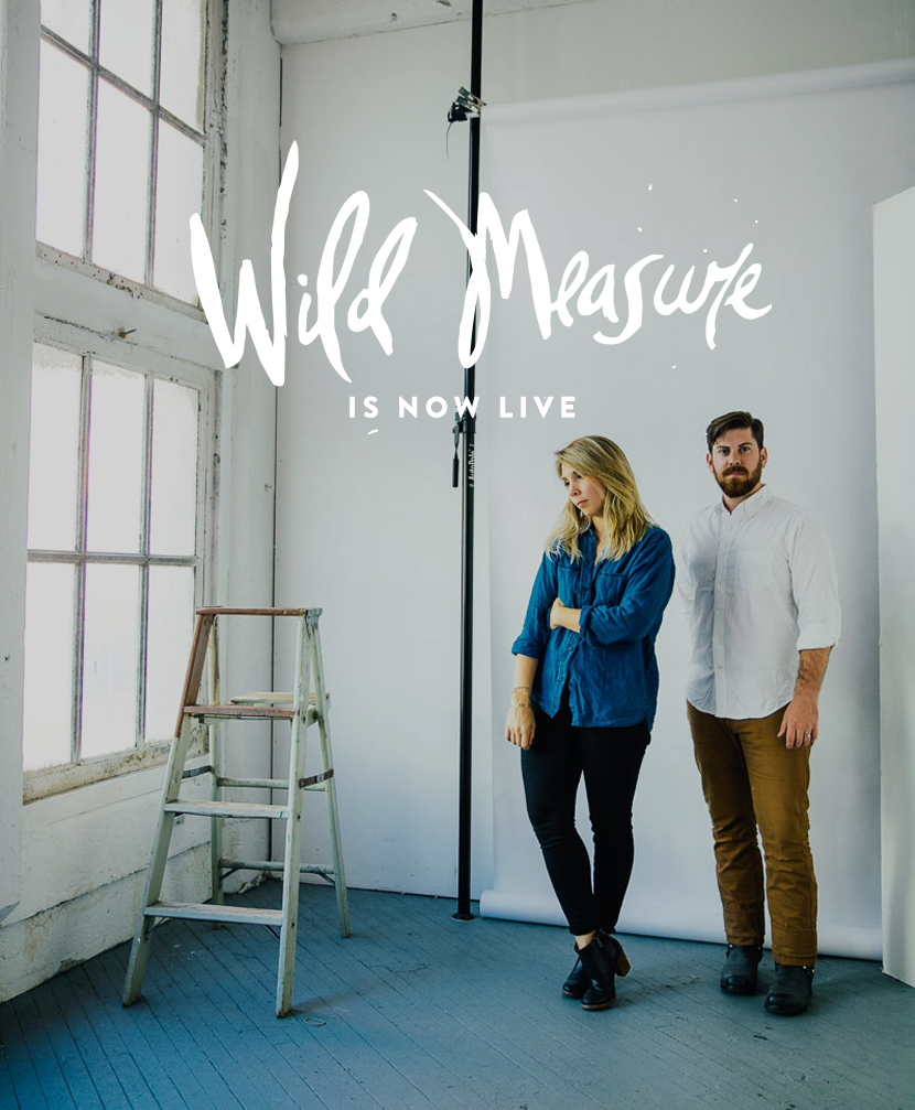 Wild Measure Site is Live  |  The Fresh Exchange