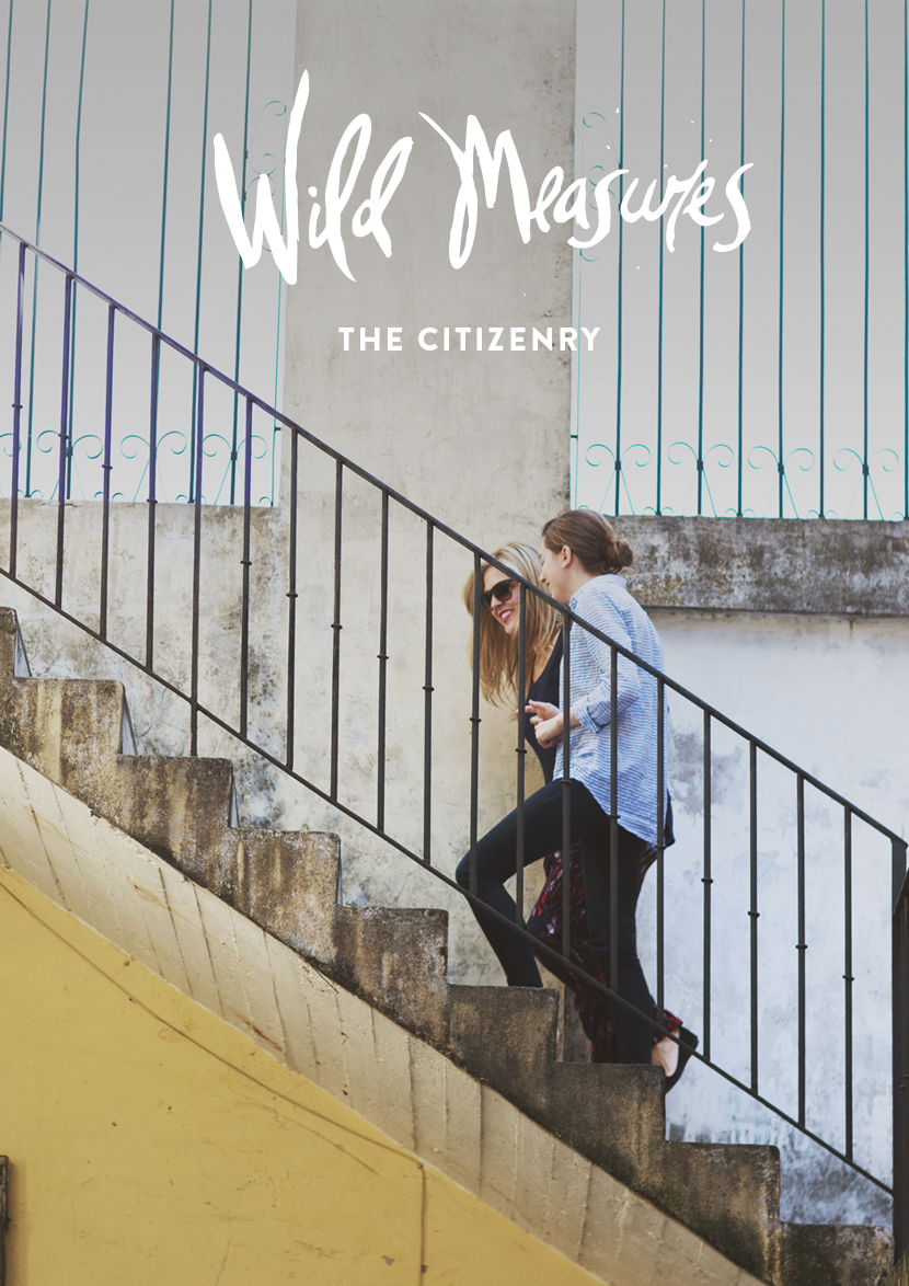 Wild Measures: The Citizenry  |  The Fresh Exchange