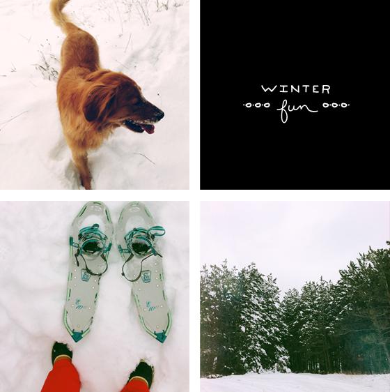 snowshoe adventure     The Fresh Exchange